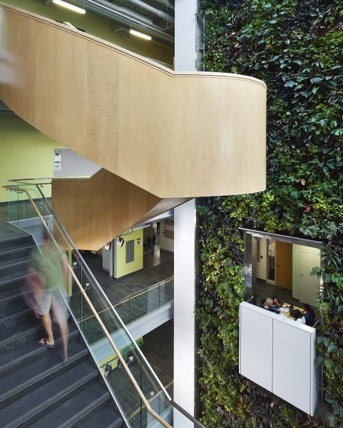 A biofilter living wall at LEED Platinum certified Algonquin College Centre for Construction Excellence, Ottawa, Ontario. Photo by Tom Arban