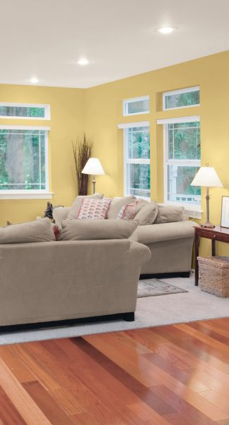 Soft, saturated colours such as Sunnybrook Yellow (40YY 61/299   Y37) mustard by CIL paint, pictured on the walls of this room, will be all the rage in home decor in 2017, according to the CIL paint brand.